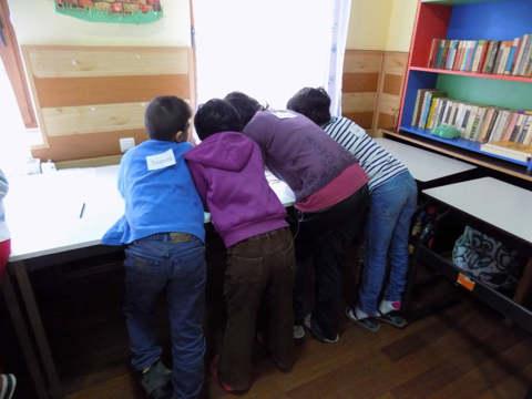 voluntariatcomportamenterisc3